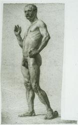 Figure Study, Male Nude Standing