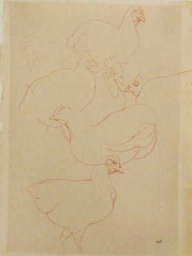 Untitled (Chickens)